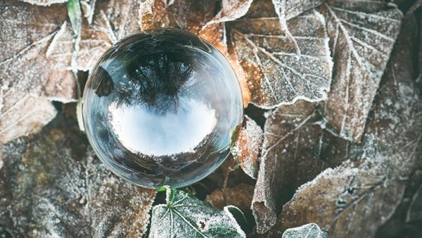 A glass ball on top of frosted leaves
